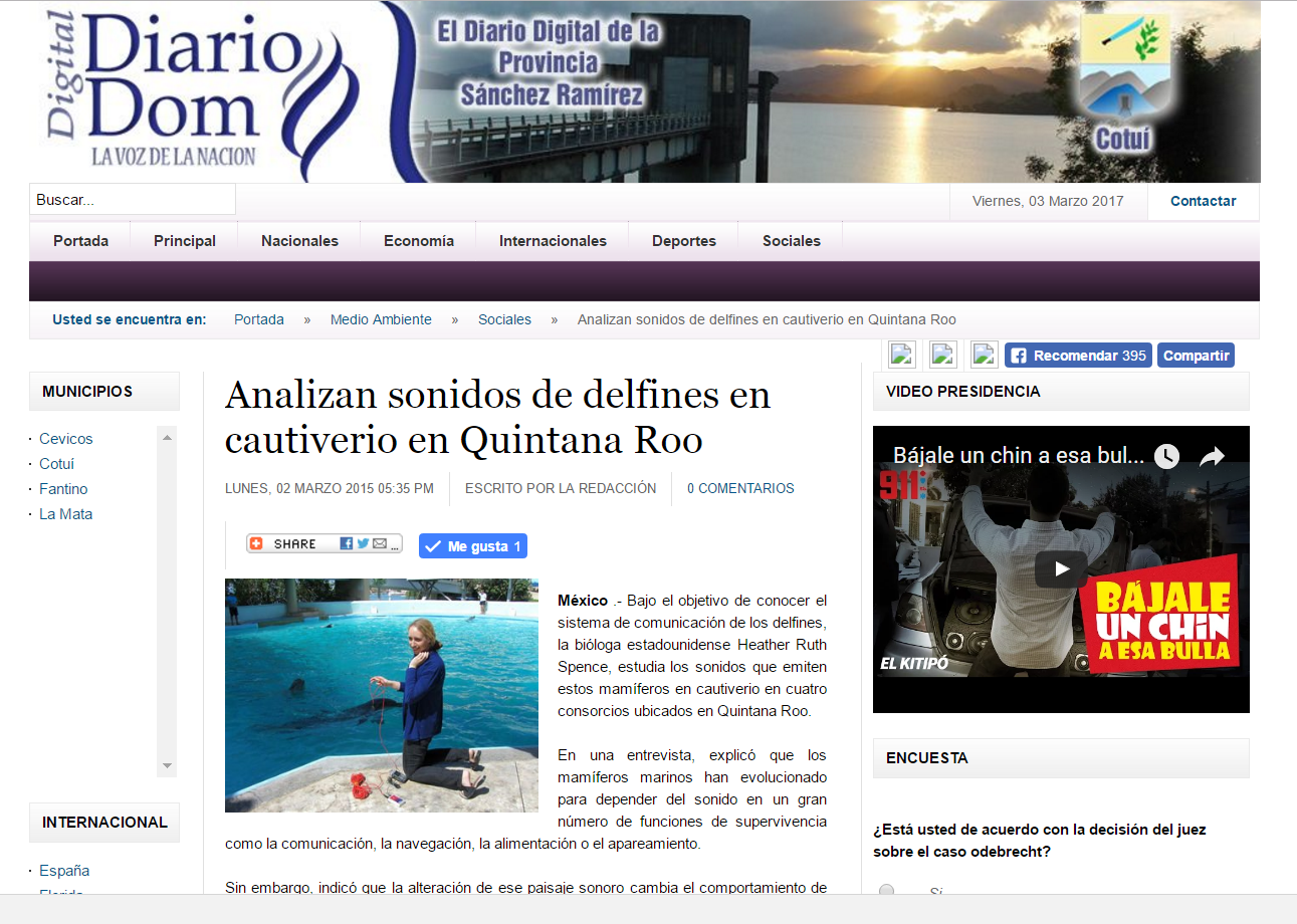 Heather news in spanish dolphins