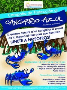 Campaña Cangrejo Azul